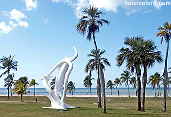 Hotel El Colony Lobby Beach